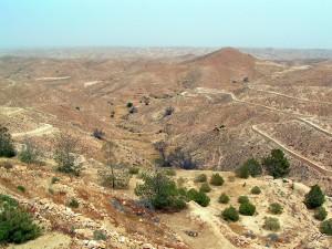 Sahara 1